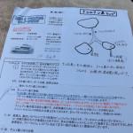 タオ島&ナンユアン島シュノーケリングツアー(Lomprayah社のカタマラン利用のツアー)(1)
